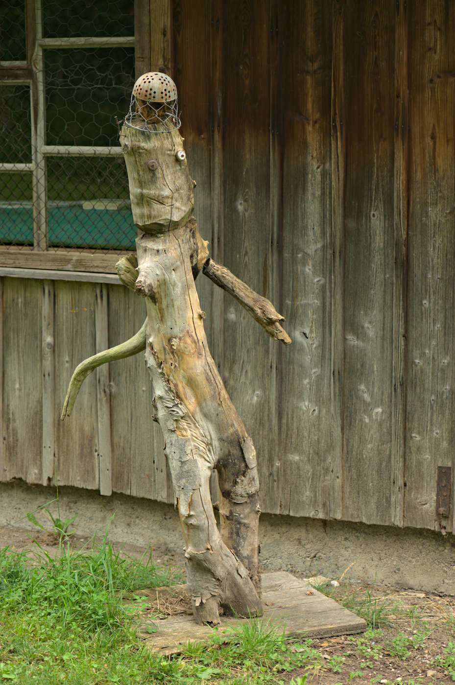 Holz-Adonis
